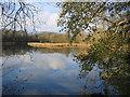 TF1007 : Lolham Fisheries, Maxey, Peterborough by Rodney Burton