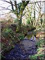 SW4836 : Stream near Georgia bridge by Sheila Russell