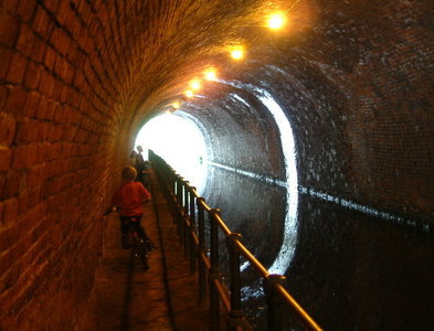 SP0585 : Edgbaston Tunnel by Chris Hoare