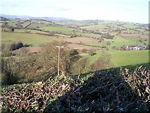 ST3494 : Sor Brook Valley, Monmouthshire by Ralph Rawlinson