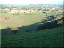 ST8920 : Breeze Hill, Melbury Abbas by Stuart Buchan