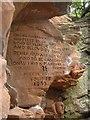 NY5045 : Rock Carvings Coombs Wood by Paul Twambley