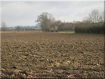 TF0917 : Ploughed Fields north of Northope by Tony Atkin