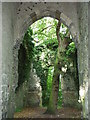 TG4819 : Ruin of St Mary's church, East Somerton by Phil Champion