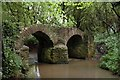 ST7388 : Sturt Bridge by Dave and Vicky