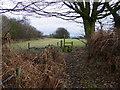 SJ8364 : Footpath west of Radnor Hall Farm by Colin Park