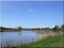 SO7716 : River Severn at Minsterworth. Looking down stream by Anonymous 4610