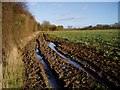 TL6041 : Muddy track near Sandons Farm by David Gruar