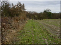 SK2443 : Footpath north of North Farm House by Colin Park