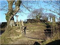 SJ0069 : Rusting gate by Dot Potter