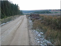 NR7127 : Forestry road and felled trees near to Lussa Dam. by Johnny Durnan
