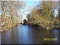 SU9282 : Lent Green Pond, Burnham by Mervyn Greer
