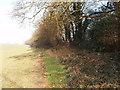SU8890 : Flackwell Heath fieldpath by David Hawgood
