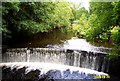 SJ9564 : Weir on River Dane by Mike Harris