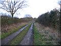 TF8621 : Farm track, Wellingham, Norfolk by Rodney Burton