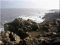 NZ3966 : Cliffs to the south of Frenchman's Bay, South Shields by Oliver Dixon
