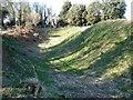 SZ8795 : Church Norton Mound by Janine Forbes