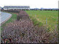 SE7832 : Ivy House Farm by Stephen Horncastle