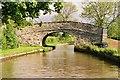 SJ6153 : Llangollen Canal - Platt's Bridge by Pierre Terre