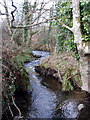 SW5035 : Stream near Boswase by Sheila Russell
