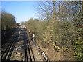 SU9897 : Metropolitan Line railway at Little Chalfont by Nigel Cox