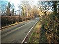 SJ3274 : Mudhouse Lane by Dennis Turner
