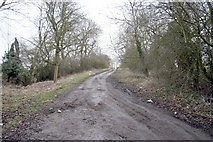 SK8704 : The old main road near Manton Lodge by Terry Butcher
