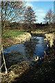 SO3915 : Old Court Moat, Llantilio Crossenny by Stephen McKay
