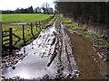NY4635 : Wet Muddy Track. by John Holmes