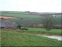 SW9546 : Vose Farm with daffodil fields by David Smith