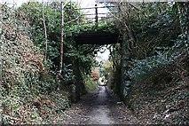 SW7542 : Tramway, now a Bridleway by Tony Atkin