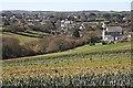 SW7739 : Perranwell Village by Tony Atkin