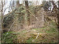 NS2272 : Remains of railway viaduct in Shielhill Glen by Thomas Nugent