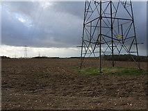SU9396 : Farmland near Woodrow by Andrew Smith