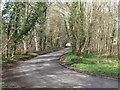 SU9393 : Lane, Marrods Bottom by Andrew Smith