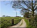 SJ5367 : Radio Mast on Birch Hill near Kelsall by Sue Adair