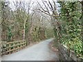 SX5160 : Cutting on the Plym Valley cycle way by David Smith