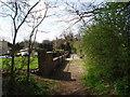 TQ4869 : Chapman's Lane by Dr Neil Clifton