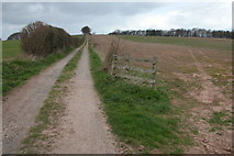 SO3638 : Track to Lyonshall Barn by Philip Halling