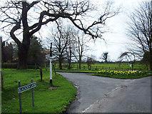 SJ8369 : Siddington Heath by michael ely
