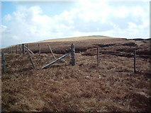 NS7221 : Stony Hill from the boundary fence by Chris Wimbush
