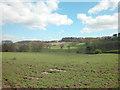 SJ4955 : Bolesworth Hill Road by Dennis Turner