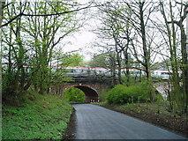 NZ2747 : Bridge over Black Dene on the East Coast main line, near Plawsworth, County Durham, 1st May 2006 by Martin Routledge