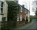 SJ5972 : Pinfold Cottages, Cuddington by Jo Lxix