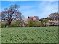 SJ4963 : Upper Brookhouse Farm, Foulk Stapleford by Mike Harris