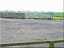 NZ3718 : Nine Acres Nursery, Back Darlington Lane by Oliver Dixon