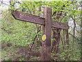 SO4713 : Offa's Dyke Fingerpost in King's Wood by Chris Heaton