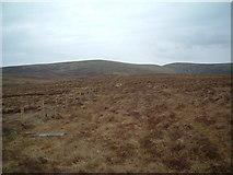 NT0325 : Below Dod Hill by Chris Wimbush