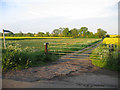 TL2548 : Public footpath, Wrestlingworth, Beds by Rodney Burton
