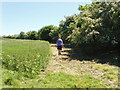 SP6314 : Bridleway and county boundary on Muswell Hill, near Brill by David Hawgood